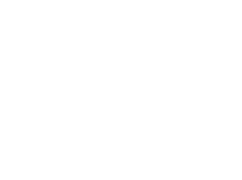 An illustration of the Davies & Davies photographer crouching behind a camera on a tripod to take photos.